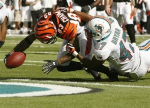 Bengals Dolphins Football